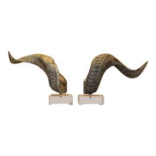 Decorative Ram Horns on Lucite For Sale