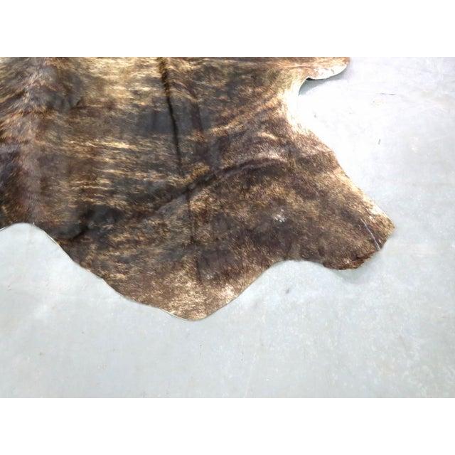 Brazilian Cattle Hide - 7′ × 9′ - Image 2 of 3