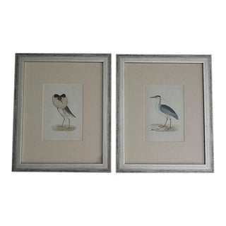Antique Hand Colored Birds Engravings, Set of 2, Rev Morris For Sale