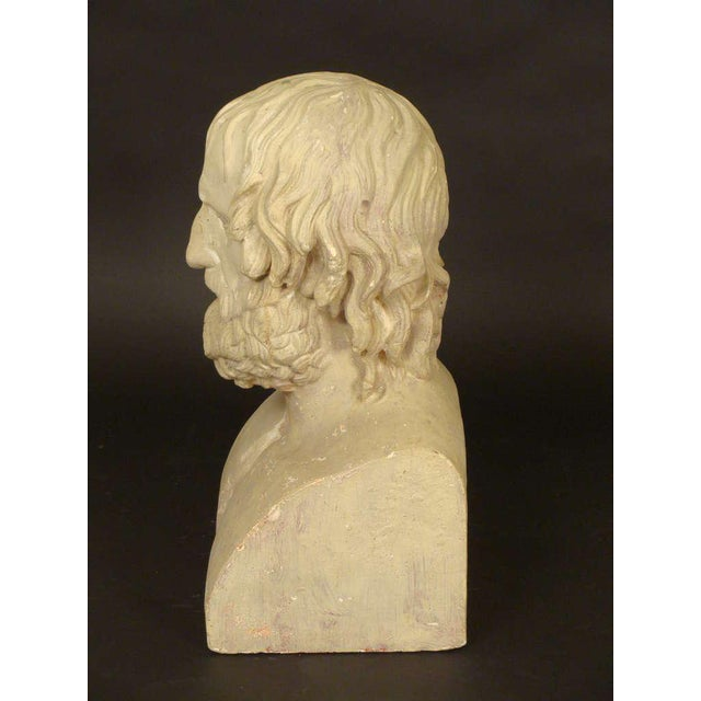 Composition Bust of Euripides - Image 2 of 11