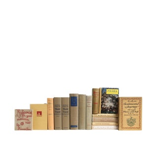 World Travels in Neutral Decorative Books - Set of 15