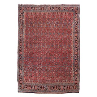 Blue & Red Bidjar Rug - 7′9″ × 11′3″ For Sale