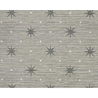 Hinson for the House of Scalamandre Big Trixie Wallpaper in Grey For Sale