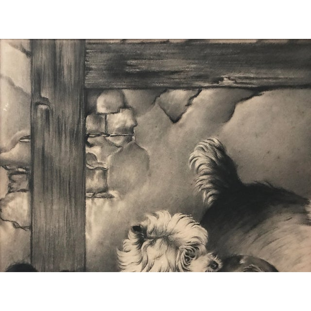 Antique Charcoal Drawing of Terriers - Image 5 of 5