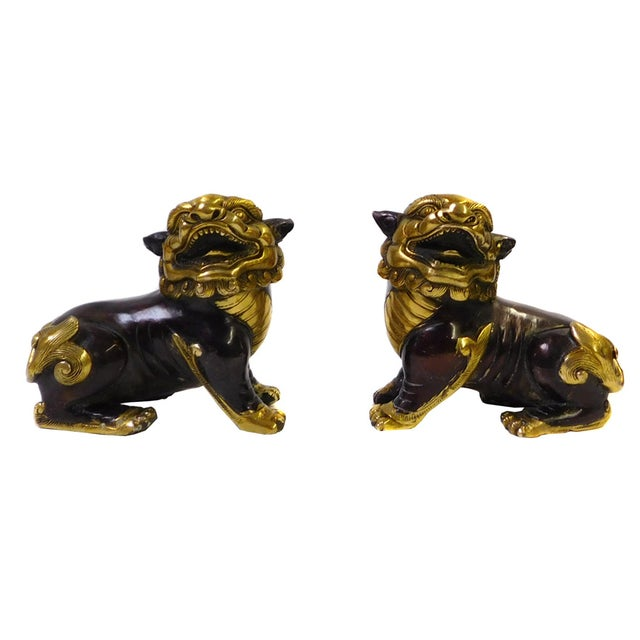 Chinese Bronze Golden Fengshui Foo Dogs - Pair - Image 1 of 6