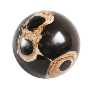 Petrified & Fossilized Wood Sphere For Sale