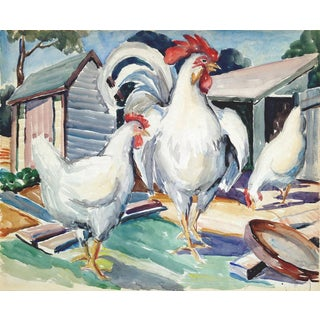 White Rooster & Hens For Sale