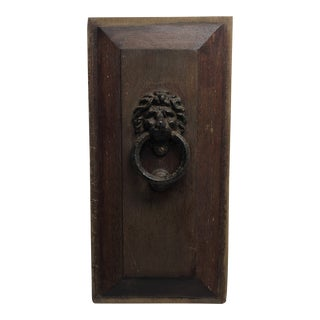 Antique Door Panel & Lion Head Knocker For Sale
