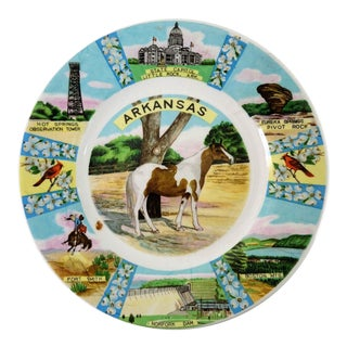 Vintage Arkansas Souvenir Plate For Sale
