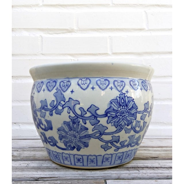 Asian blue and white floral pot. Great for a tropical plant!