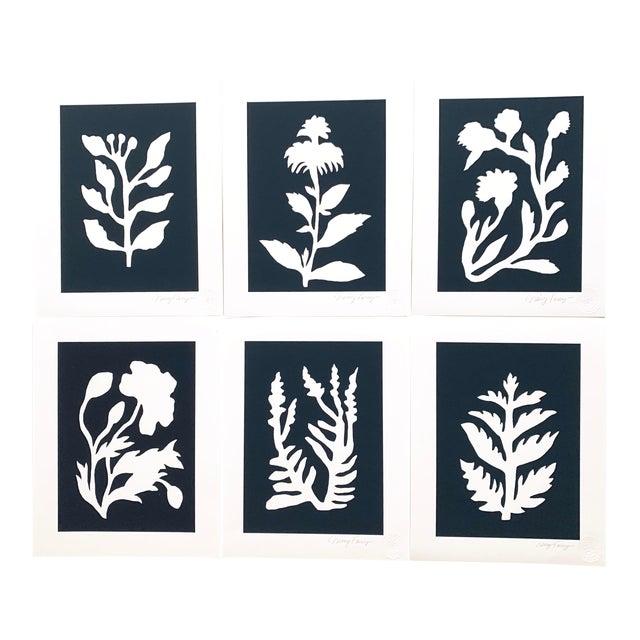 """Sunprints"" Botanical Abstractions Fine Art Giclees - Set of 6 For Sale"