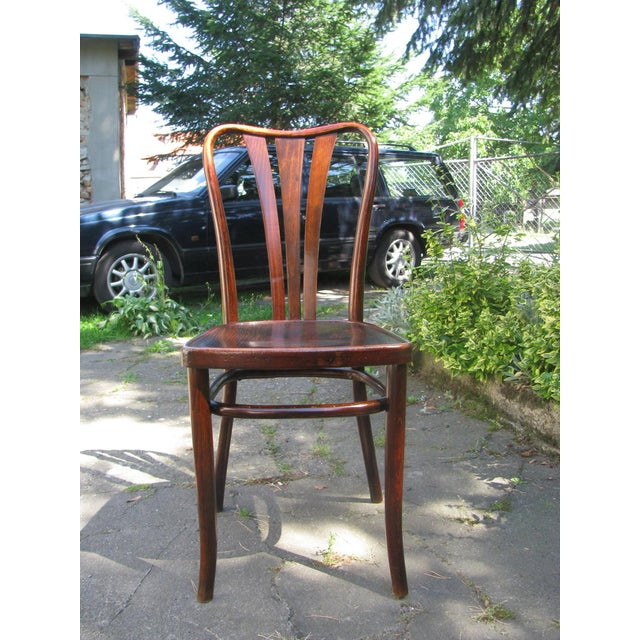 Vintage Dining Chairs by Thonet, 1930s - Set of 6 For Sale - Image 6 of 11