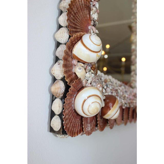 Seashell Encrusted Mirror by Snob Galeries For Sale - Image 11 of 13