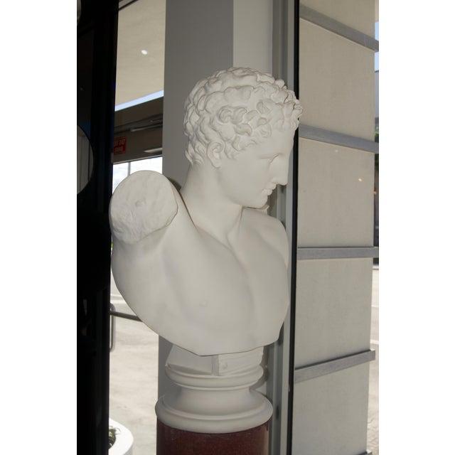 "Plaster Neoclassical Revival ""Hermes"" Plaster Bust For Sale - Image 7 of 13"