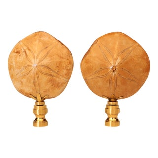 Sand Dollar Fossil Lamp Finials - a Pair For Sale