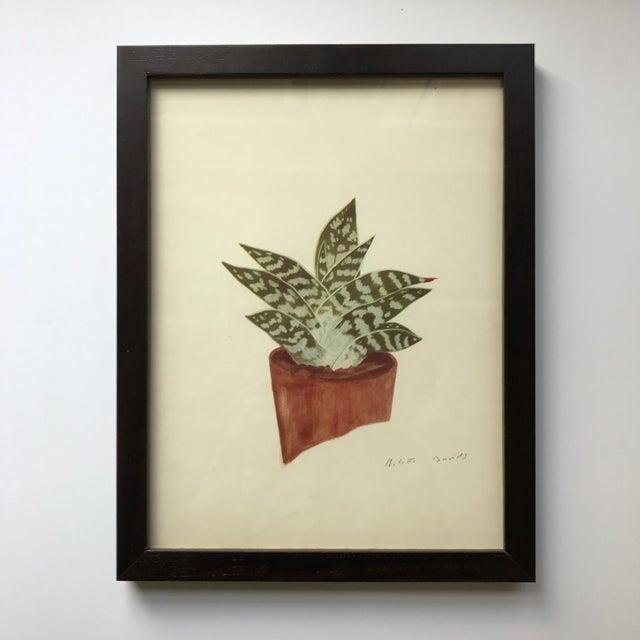 Framed Rock Plants - Set of 32 - Image 11 of 11