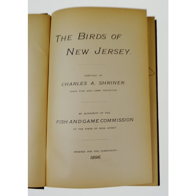 Paper 1896 The Birds of New Jersey Book For Sale - Image 7 of 11