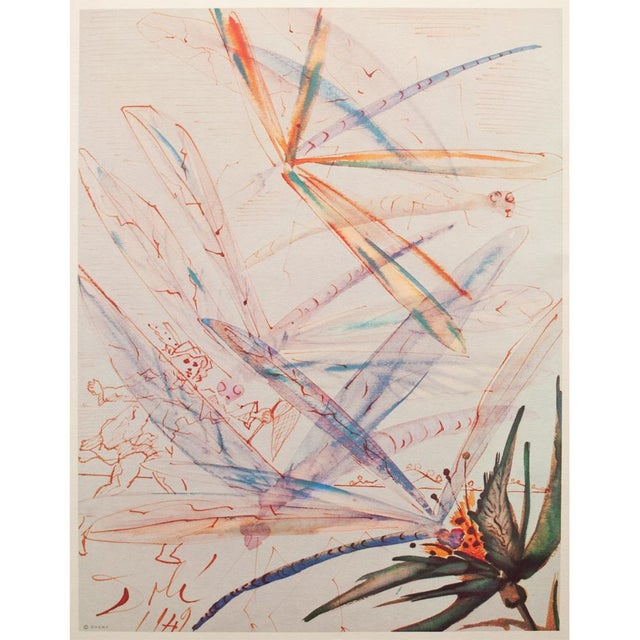 """A rare original period large offset lithograph after original """"Dragonflies"""" watercolor by Salvador Dali. This is one of..."""
