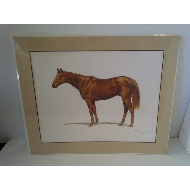 This is a vintage limited edition print by Guy Boheleach depicting the 1978 Triple Crown Winner, Affirmed. Numbered...