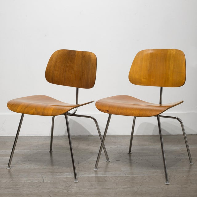 Early Ray and Charles Eames for Herman Miller Dcm Chairs, Circa 1950- Price Is Per Chair For Sale - Image 10 of 13
