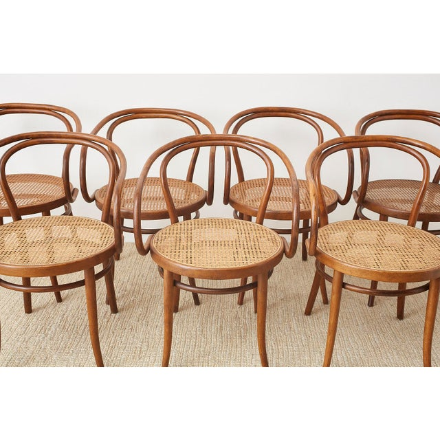 Thonet 209 Bentwood Cane Armchairs - Set of 8 For Sale - Image 4 of 13