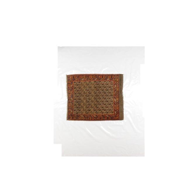 Antique Persian Afshar Carpet - 4' x 4'11'' - Image 2 of 4
