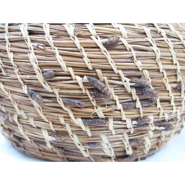 Native American 20th Century Native American Pine Needle Basket For Sale - Image 3 of 4