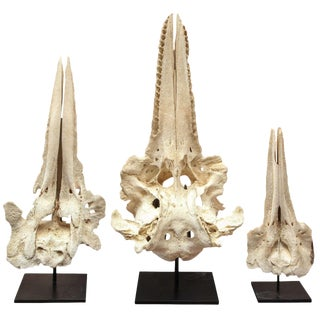 Set of Three Bone Sculptures, Circa 1880 For Sale