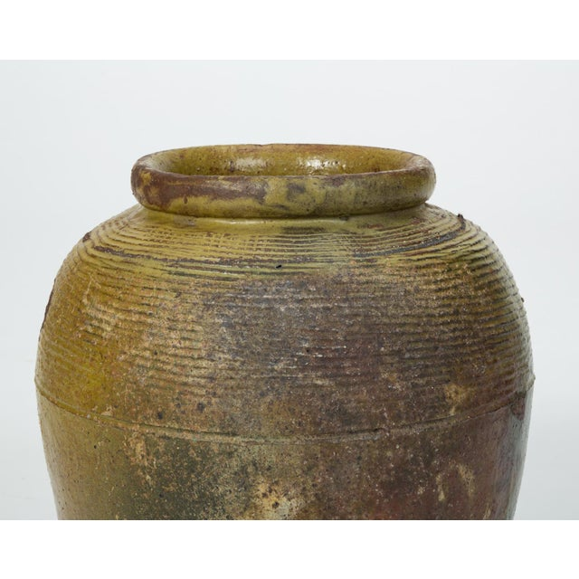 Green Hand-Thrown Garden Pot With Olive Green Glaze For Sale - Image 8 of 11
