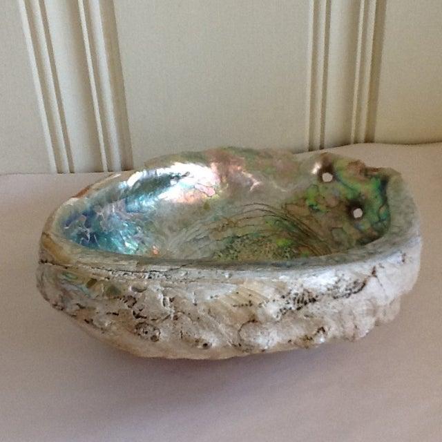 Vintage Abalone Shell Bowl - Image 5 of 8