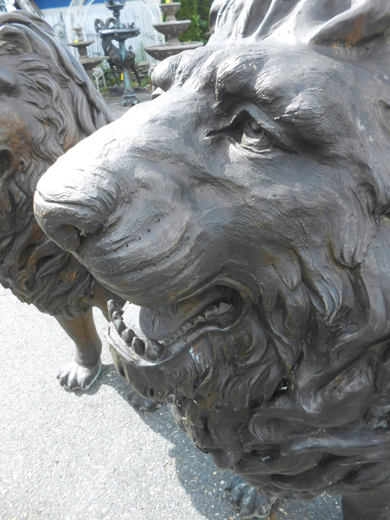 Pair Of Majestic Bronze Lion Garden Statues   Image 7 Of 9