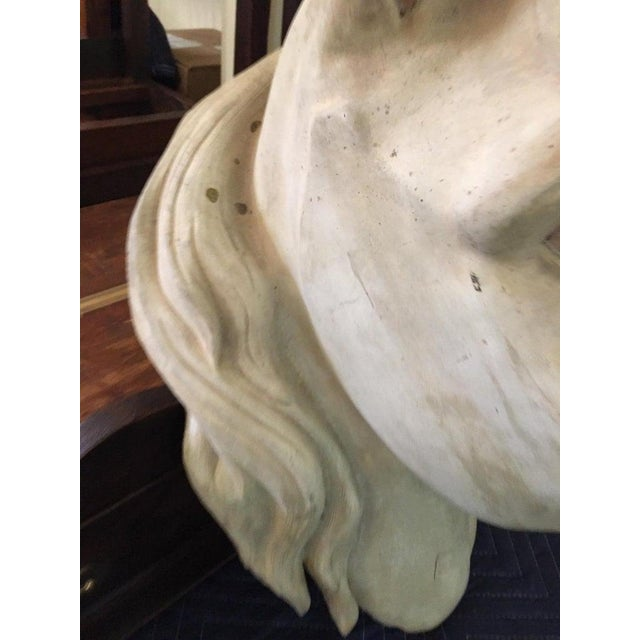 Tan French Terracota Horse Head, 20th Century For Sale - Image 8 of 11