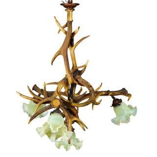 Rustic Antler Lamp With Deer and Virginia Deer Antlers For Sale