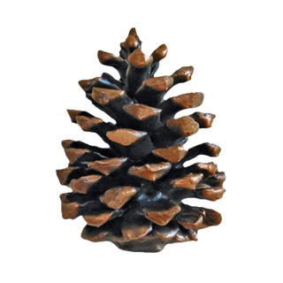 Ponderosa Pine Cone Knob (Vertical with Medium) with Traditional Patina For Sale