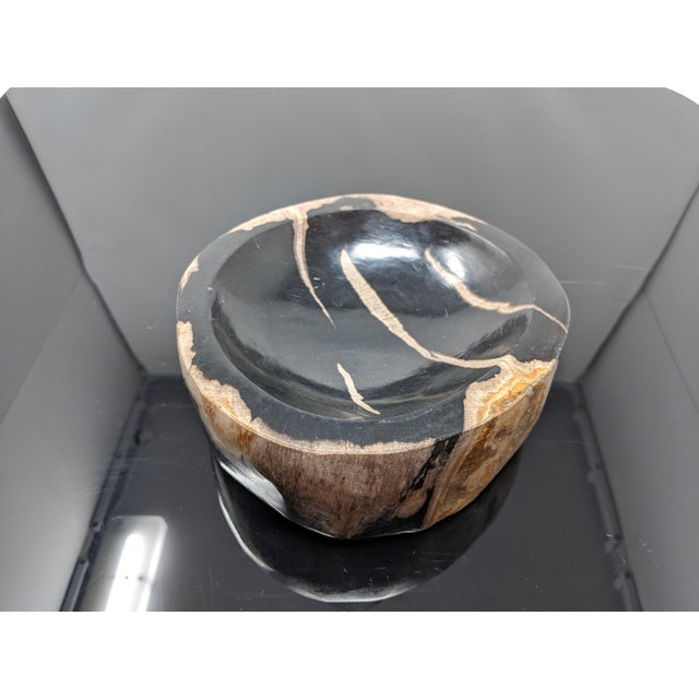 Early 21st Century Petrified Wood Bowl, Catchall or Candle Holder For Sale - Image 5 of 11
