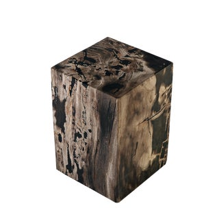 Organic Modern Petrified Wood Stool Accent Table For Sale
