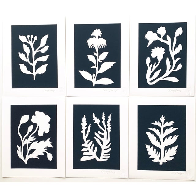 """""""Sunprints"""" Botanical Abstractions Fine Art Giclees - Set of 6 For Sale - Image 9 of 9"""