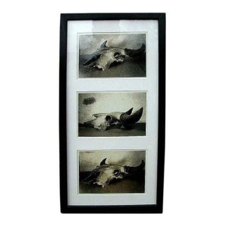 1940s Framed Gelatin Prints