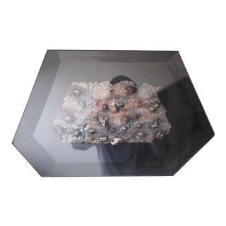 Original Betty Gilman Sculpture in Acrylic Shadowbox For Sale