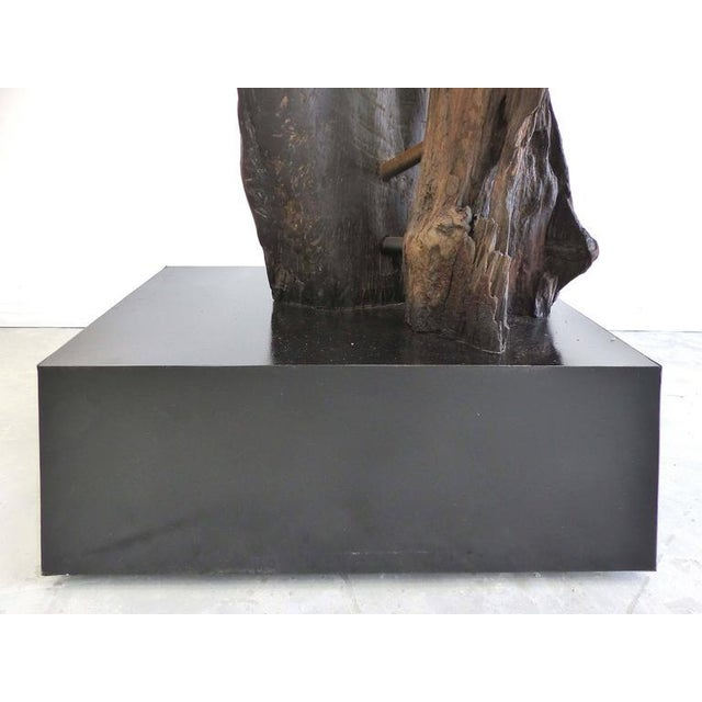 """Black """"Kangaroo"""" a Petrified Wood Sculpture from the Amazon by Artist Valeria Totti For Sale - Image 8 of 11"""