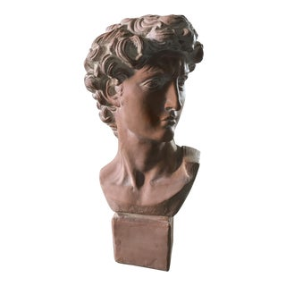 Vintage Terra-Cotta Statue Bust of David