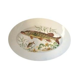 Porcelain Fish Platter For Sale