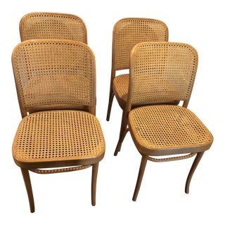 Josef Hoffmann Thonet Prague Side Chairs- a Set of Four For Sale