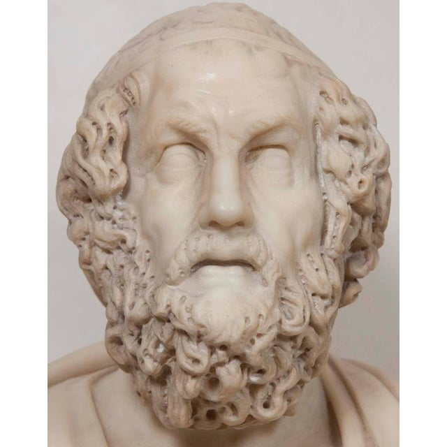 Marble Bust of Homer For Sale - Image 10 of 11