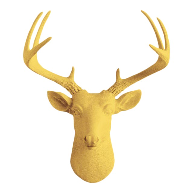 Wall Charmers Curry Orange Faux Taxidermy Mini Deer Head Mount For Sale