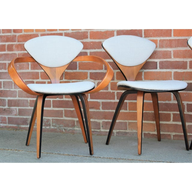 Mid-Century Modern 1950s Vintage Norman Cherner for Plycraft Molded Plywood Dining Chairs- Set of 6 For Sale - Image 3 of 13