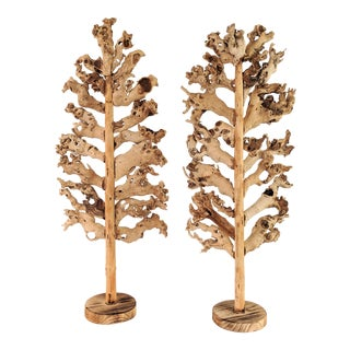 Cypress Root Tree Sculptures - a Pair For Sale