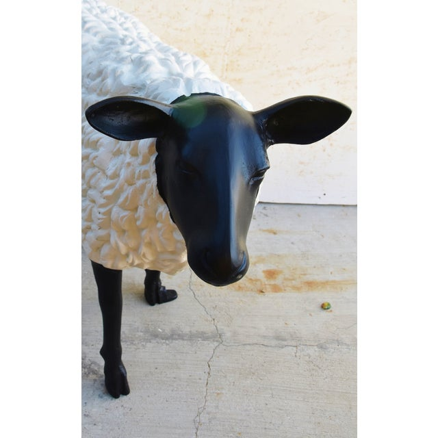Vintage Metal Life-Size Sheep Lamb Garden, Patio, Lawn or House Statue For Sale - Image 10 of 13