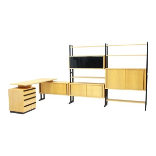 Very Rare Office With a Shelf and a Desk by Alfred Altherr, Switzerland, 1955 For Sale