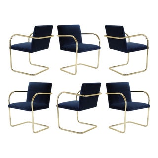 Brno Tubular Chairs in Navy Velvet & Polished Brass - Set of 6 For Sale